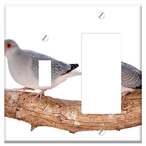 (1-Toggle 1-Rocker/GFCI Combination Wall Plate Cover - Mourning Doves Diamond Turtledoves Birds Bird)