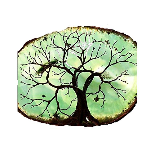Kacowpper 5D Diamond Painting Full Drill Embroidery DIY Tree Colorful Nature Animal Pumpkin Scene Maple Leaf Christmas Thanksgiving Kit Home Decor Craft