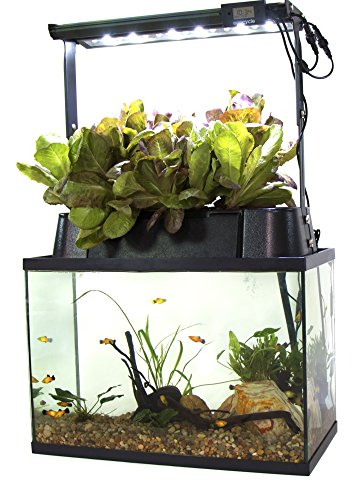 (Ecolife ECO-Cycle Aquaponics Indoor Garden System with LED Light Upgrade)