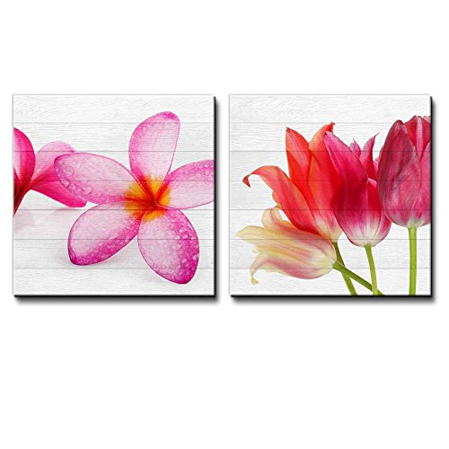 Pink Hawaiian Plumeria Flowers on Along with Pink and Coral Tulips Over White Wood Panels