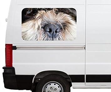 Autoaufkleber Hund Nase Tier Lustig Welpe Gesicht Car Wohnmobil Auto