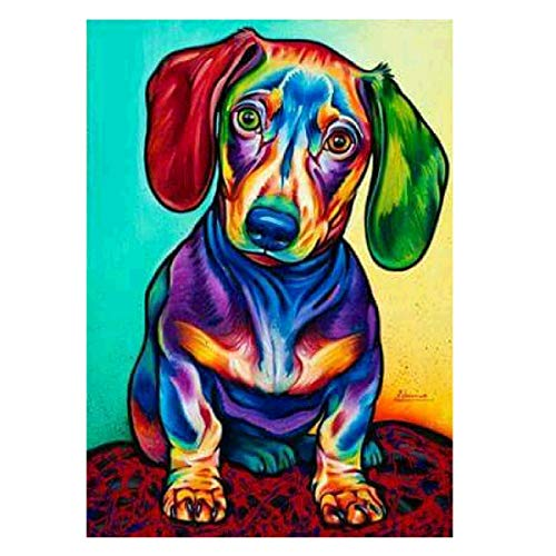 inting by Number Kit DIY Crystal Rhinestone Cross Stitch Embroidery Arts Craft Picture Supplies for Home Wall Decor,Dachshund Sausagedog - 11.8x15.7 inches ()