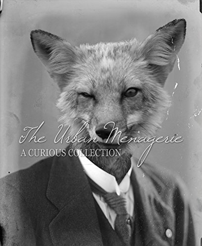 [Anthropomorphic Portrait, Winking Fox Art Print, Multiple Sizes Available, Unframed] (Inanimate Object Costume)