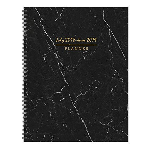 TF Publishing 19-9741A July 2018 – June 2019 Marble Large Weekly Monthly Planner, 9 x 11″, Black, White & Gold