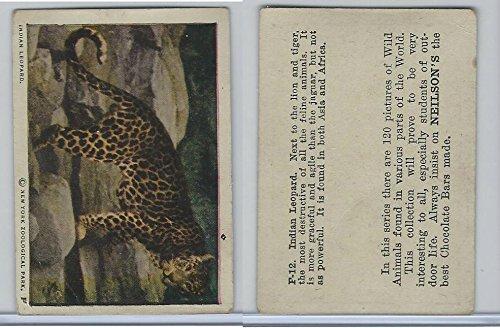 V67 Neilson's Chocolate, Wild Animals, 1930's, F12 Indian Leopard