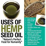 Shudh Desi Pure Hemp Seed Oil Cold Pressed 100ml