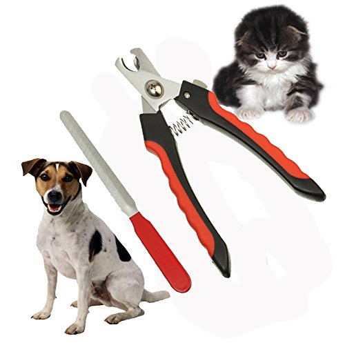 the-best-dog-nail-clippers-with-nail-file-for-pet