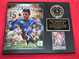 Tim Tebow Florida Gators Collectors Clock Plaque w/8x10 Photo and Card