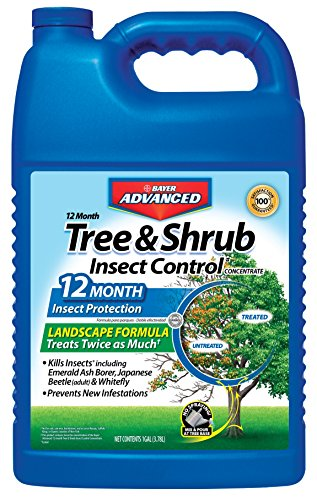 Bayer Tree Insecticide - Bayer Advanced 701525 12 Month Tree and Shrub Insect Control Landscape Formula Concentrate, 1-Gallon