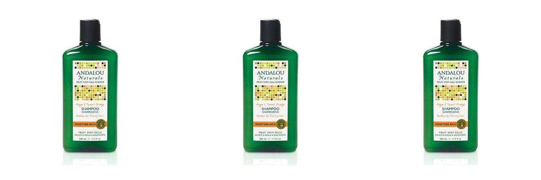 (3 PACK) - Andalou Argan & Sweet Orange Moisture Rich Shampoo | 340ml | 3 PACK - SUPER SAVER - SAVE MONEY