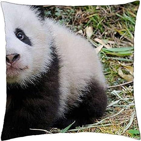 Bebé oso panda de peluche manta - Funda de almohada caso (18 ...