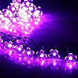 Best Solar String Light 9