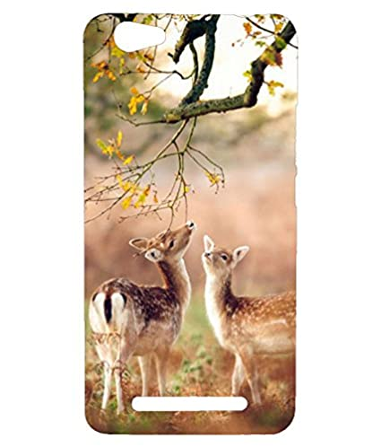 check out b98ed 42450 Reliance Lyf Wind 7 Back Cover: Amazon.in: Electronics