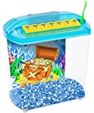 Penn Plax Rite-Bite Educational Tank - For a Betta Education - A Perfect 1st Fish Tank