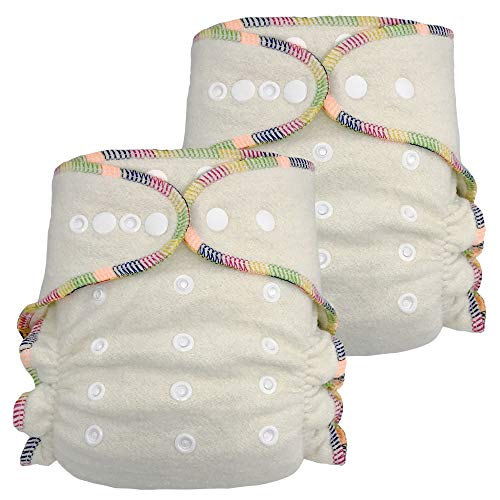 Cloth Fitted Diaper (Fitted Cloth Diaper: Overnight Diaper with 2 Cotton Hemp Inserts, One Size with Snap Buttons (2-Pack))