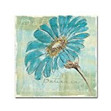 Trademark Fine Art Spa Daisies II by Chris Paschke Wall Decor, 18 by 18-Inch Canvas Wall Art