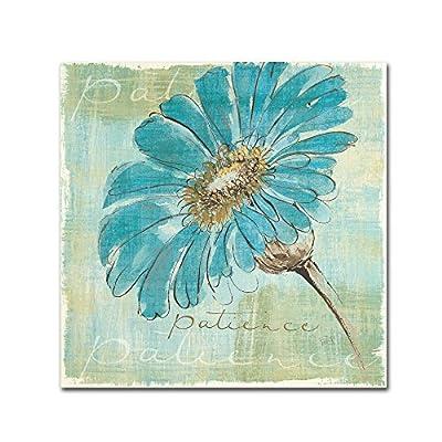 Trademark Fine Art Spa Daisies II by Chris Paschke Wall Decor -  - wall-art, living-room-decor, living-room - 51i%2BQbGjA7L. SS400  -