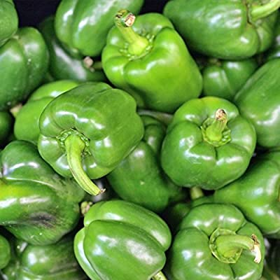 California Wonder 300 TMR Sweet Pepper Garden Seeds - Non-GMO, Heirloom Vegetable Gardening Seed