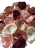 Maroon blush pink ivory champagne and rose quartz mix of 350 flower petals