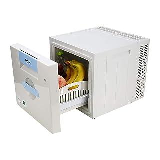 RTTyp Caja refrigerada Silencioso Compartimiento refrigerado para automóvil de 21 litros, refrigerador, Mini refrigerador, Dormitorio, Hospital, Caja refrigerada