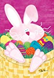 Cheap Toland Home Garden Basket Case 28 x 40 Inch Decorative Painted Easter Egg Bunny Rabbit House Flag