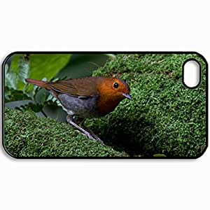 Customized Cellphone Case Back Cover For iPhone 4 4S, Protective Hardshell Case Personalized Bird Moss Brown Plumage Greens Nature Black
