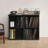 Way Basics 2-Shelf Vinyl Record Storage Cube and LP Record Album Storage Shelf