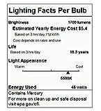 Slow Dolphin Photo CFL Full Spectrum Light Bulb,2 x