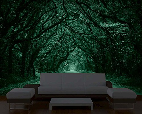 Startonight Mural Wall Art Photo Decor Trees Tunnel Large 8 Feet 4 Inch By  12 Feet Wall Mural For Living Room Or Bedroom     Amazon.com