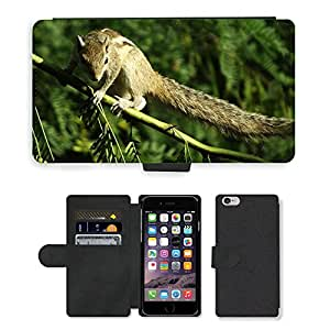 """Hot Style Cell Phone Card Slot PU Leather Wallet Case // M00114422 Squirrel Animal Nature Cute Rodent // Apple iPhone 6 4.7"""""""