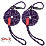 MayPaw Small Dog Slip Lead Leash, 5 Foot Nylon Rope Puppy Leash, Durable Colorful Adjustable Training Pet Leash (1/4 in x 5ft, 2 Pack Purple)