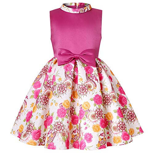 - Dresses for Girls Vintage Floral Spring Garden Party Cocktail Picnic Dresses Little Girl's Casual Zipper Back School Dresses Girls Sleeveless Vintage Casual Dresses Size 4 3-4 (1862-2 Fushia,4)