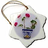 3dRose Danita Delimont - Flowers - Spain, Andalusia. Arcos de la Frontera. Painted ceramic flower pot. - 3 inch Snowflake Porcelain Ornament (orn_277888_1)