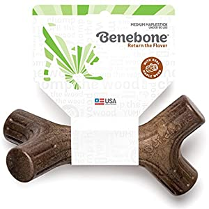 Benebone Maplestick Real Wood Durable Dog Chew Toy, Made in USA, Medium