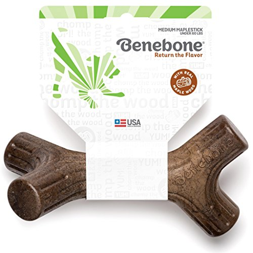Benebone Maplestick Durable Dog Stick Chew Toy, Made in USA, REAL Maple Wood Flavor, Medium ()