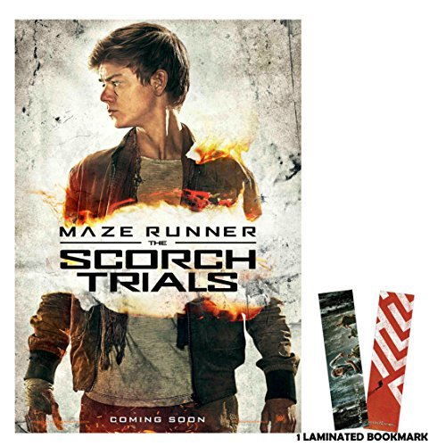 Maze Runner Movie Poster Newt
