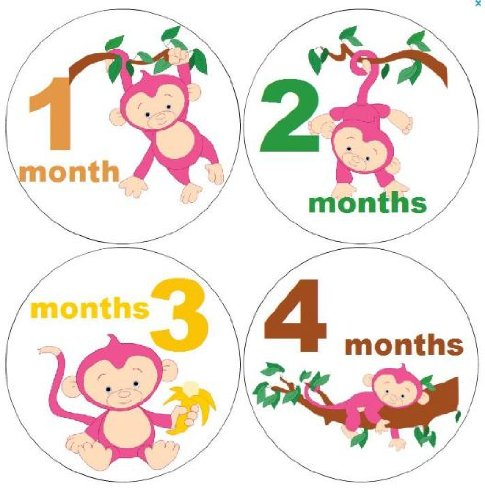 amazon com monthly baby girl stickers baby boy stickers girl