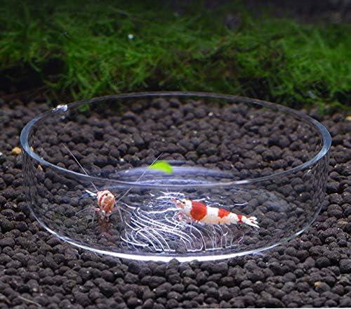 Plato para acuario diseñado para alimentar camarones y reptiles 8
