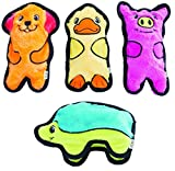 (4 pc. Multi-Pack) Outward Hound Invincibles Plush Stuffing-less Dog Toys with Squeaker Review