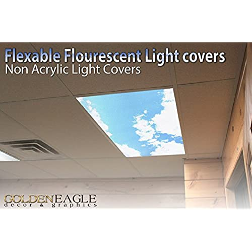 Fluorescent Light Fixture Cover: Amazon.com