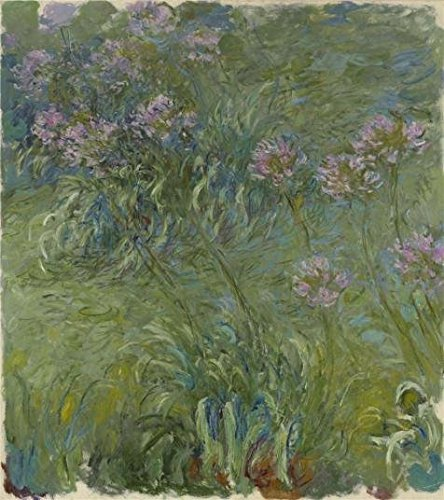 - 'Agapanthus,1914-17 By Claude Monet' Oil Painting, 8x9 Inch / 20x23 Cm ,printed On Perfect Effect Canvas ,this Reproductions Art Decorative Prints On Canvas Is Perfectly Suitalbe For Kids Room Artwork And Home Artwork And Gifts
