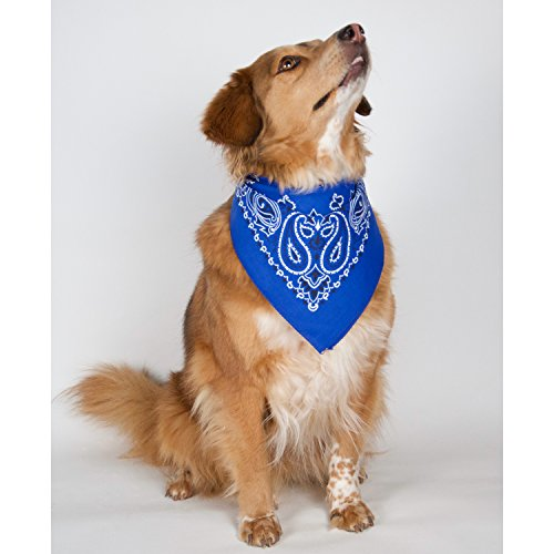 Blue Bandana 3-Pack - Made in USA For 70 Years - Sold by Vets – 100% Cotton –Sewn Edges – Printed Both Sides by OHSAY USA (Image #2)