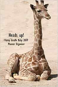 Heads up! Funny Giraffe Baby 2019 Planner Organizer: Monthly ...