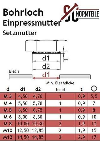 - Schlagmutter 5 St/ück SC9120 SC-Normteile/® - aus rostfreiem Edelstahl A2 Sechskant-Einpressmuttern // Setzmuttern V2A Niro M8 -