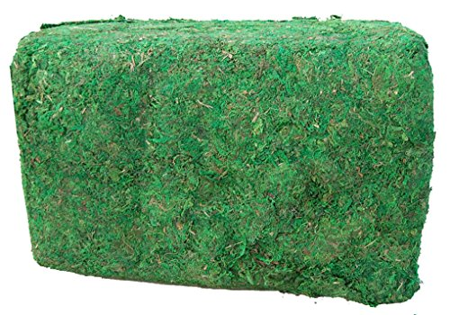 (Topiary Art Works Green Moss Natural Color - Large 11 LBS Bale)