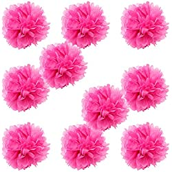 "WYZworks Set of 10 - FUCHSIA 8"" - (10 Pack) Tissue Pom Poms Flower Party Decorations for Weddings, Birthday, Bridal, Baby Showers, Nursery, Décor"