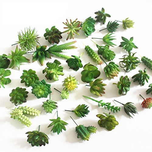 Khalee Mixed Artificial Succulent Plants Fake Succulents, (12 Different PCS, Random) by Khalee