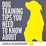 Dog Training Tips You Need to Know About | Carla Sugarman