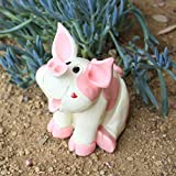 6 inch Baby Pig piglet Statue ,Pence Pets For Sale