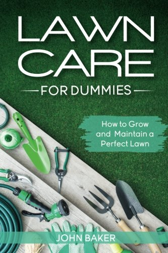 lawn-care-for-dummies-how-to-grow-and-maintain-a-perfect-lawn